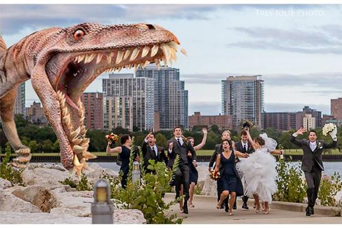 Milwaukee wedding from Tres Jolie Photo on Wed in Milwaukee.