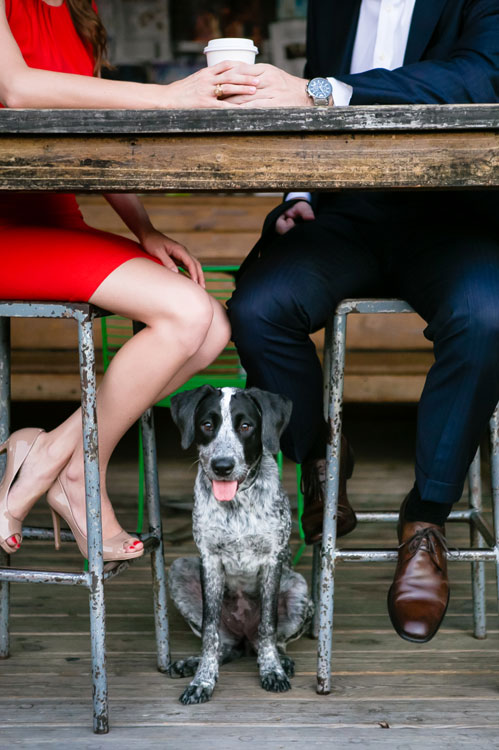 GSPV-Dog-Photo4