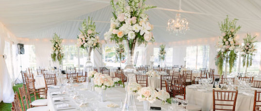 Milwaukee wedding planner: The Bride Consultant